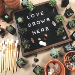 Plant and Pot Workshop (All Ages Welcome)